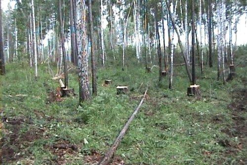 знакомства в куйтунском районе иркутской области