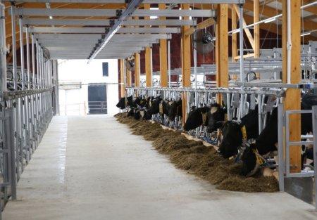 В 2018 году сумма гранта для начинающих фермеров будет увеличена до трех млн рублей