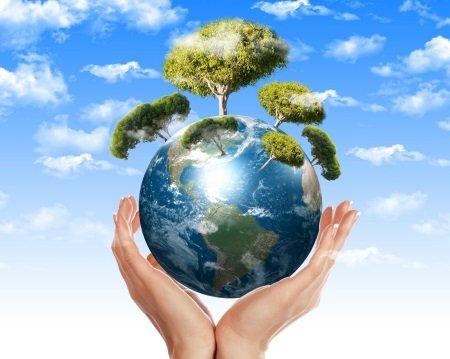 В Иркутске состоится открытый урок, посвященный Всемирному дню окружающей среды