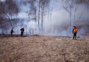 За прошедшие сутки, 3 мая, в лесном фонде в Иркутской области обнаружено и ликвидировано три пожара
